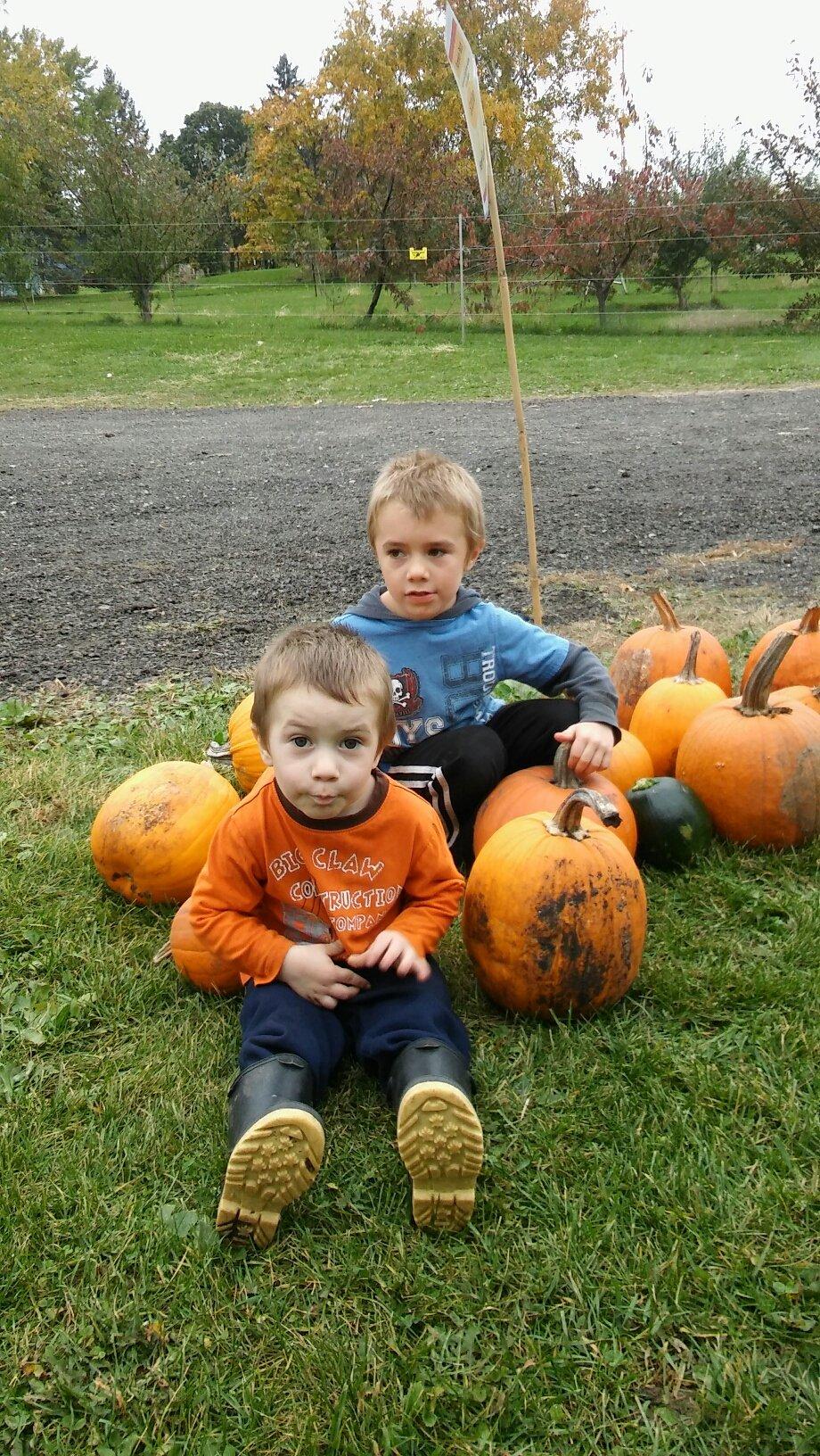 field trip for pre-schooler to pumpkin patch